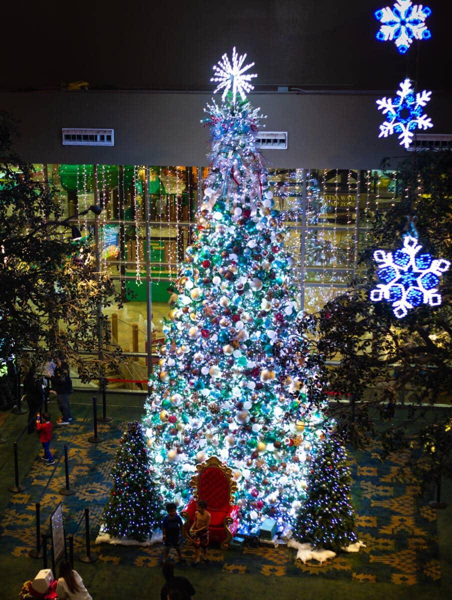 Commercial Christmas Lights Roanoke Tree