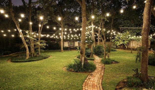 outdoor lights roanoke